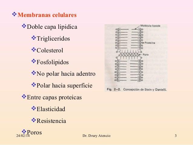 Modulo absorcion Slide 3