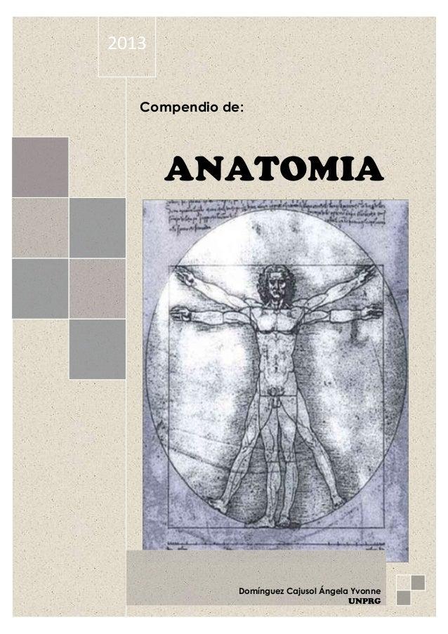 Modulo de anatomia