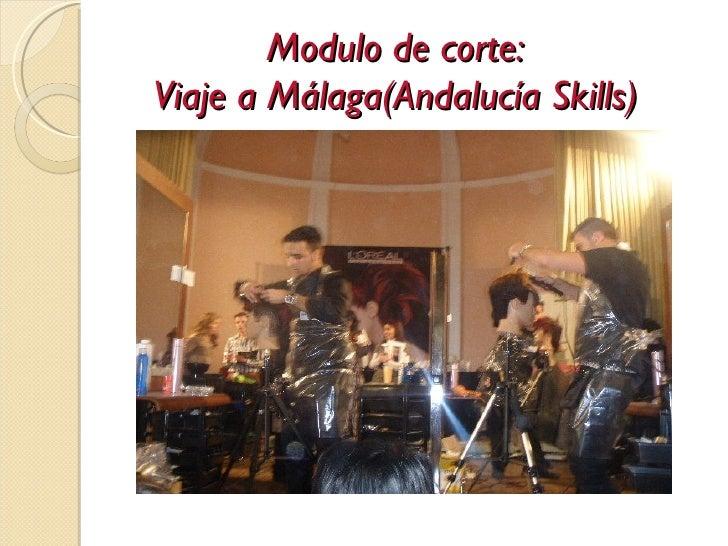 Modulo de corte:Viaje a Málaga(Andalucía Skills)