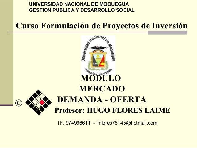 Curso Formulación de Proyectos de Inversión MODULO MERCADO DEMANDA - OFERTA UNIVERSIDAD NACIONAL DE MOQUEGUA GESTION PUBLI...