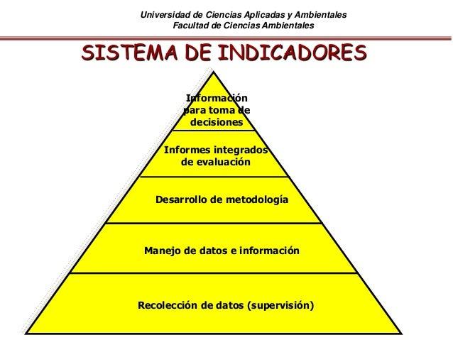 Universidad de Ciencias Aplicadas y Ambientales Facultad de Ciencias Ambientales SISTEMA DE INDICADORES Recolección de dat...