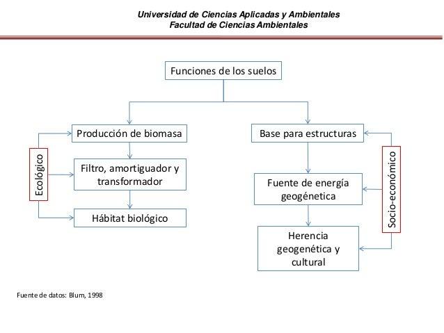 Universidad de Ciencias Aplicadas y Ambientales Facultad de Ciencias Ambientales Producción de biomasa Filtro, amortiguado...