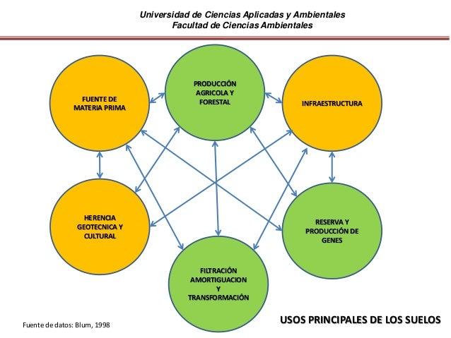 Universidad de Ciencias Aplicadas y Ambientales Facultad de Ciencias Ambientales PRODUCCIÓN AGRICOLA Y FORESTAL HERENCIA G...