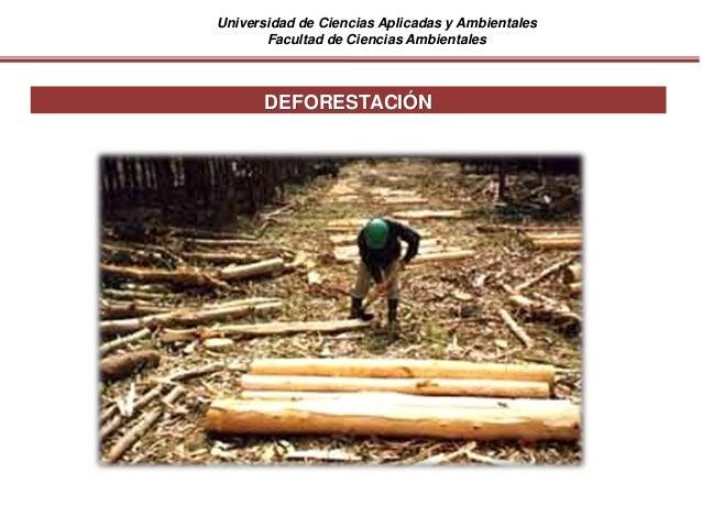 Universidad de Ciencias Aplicadas y Ambientales Facultad de Ciencias Ambientales DEFORESTACIÓN