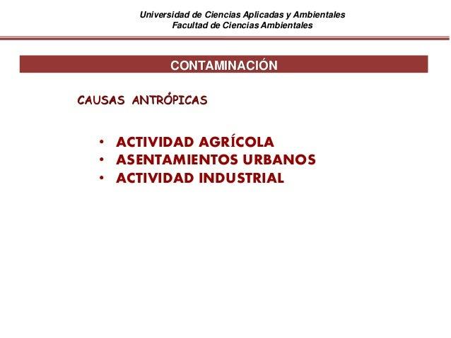 Universidad de Ciencias Aplicadas y Ambientales Facultad de Ciencias Ambientales • ACTIVIDAD AGRÍCOLA • ASENTAMIENTOS URBA...