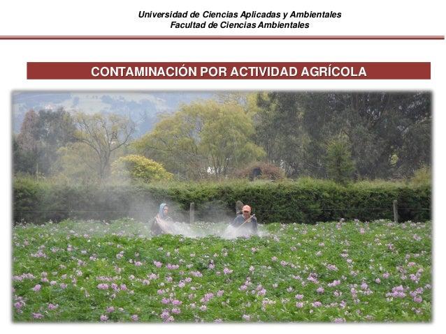 Universidad de Ciencias Aplicadas y Ambientales Facultad de Ciencias Ambientales CONTAMINACIÓN POR ACTIVIDAD AGRÍCOLA
