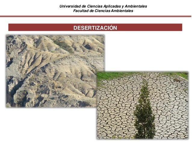 Universidad de Ciencias Aplicadas y Ambientales Facultad de Ciencias Ambientales DESERTIZACIÓN