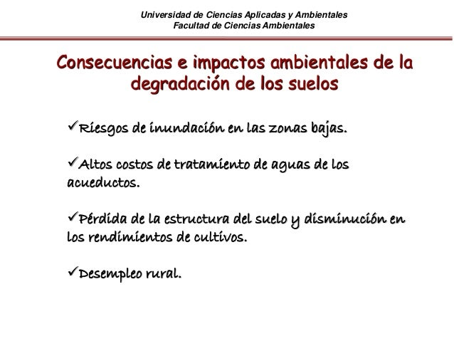 Universidad de Ciencias Aplicadas y Ambientales Facultad de Ciencias Ambientales Riesgos de inundación en las zonas bajas...