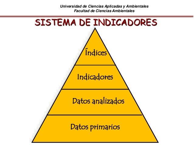 Universidad de Ciencias Aplicadas y Ambientales Facultad de Ciencias Ambientales SISTEMA DE INDICADORES Datos primarios Da...