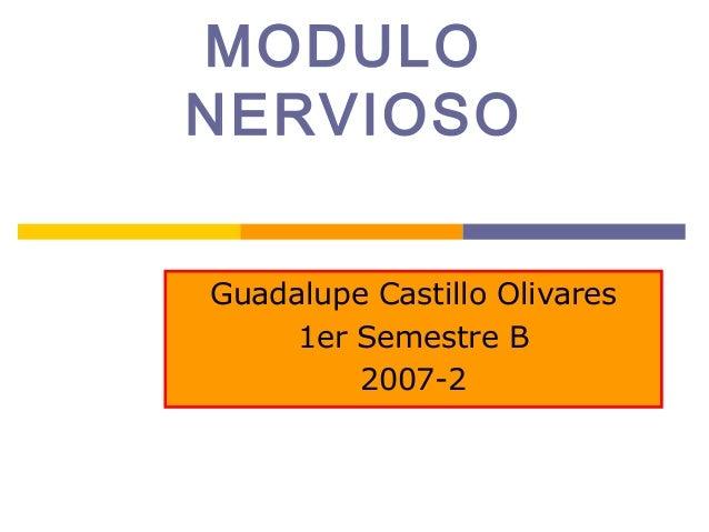 MODULONERVIOSOGuadalupe Castillo Olivares     1er Semestre B         2007-2