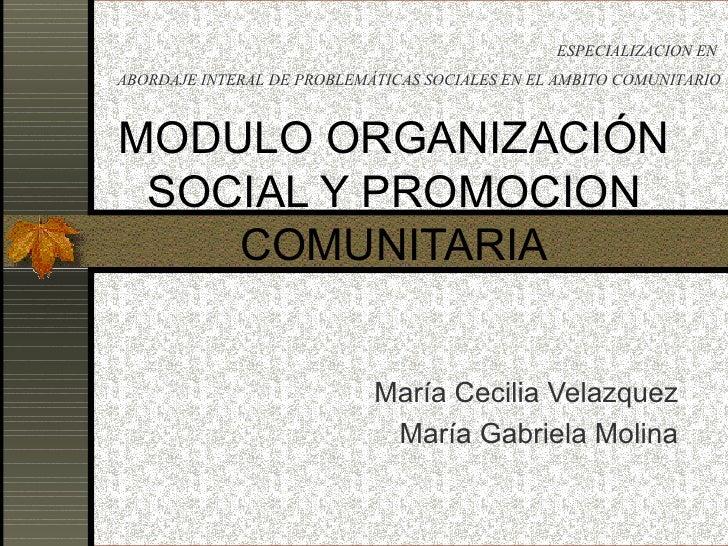MODULO ORGANIZACIÓN SOCIAL Y PROMOCION COMUNITARIA María Cecilia Velazquez María Gabriela Molina ESPECIALIZACION EN  ABORD...