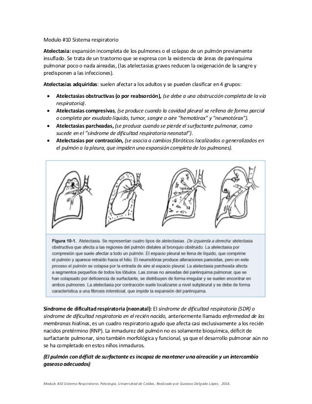 Patologia - Sistema Respiratorio