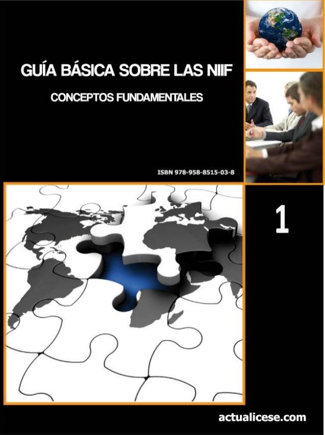 GUÍA BÁSICA SOBRE LAS NIIF Conceptos Fundamentales actualicese.com 2011