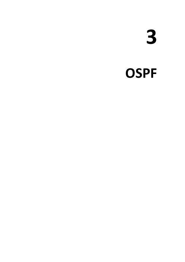 3 OSPF
