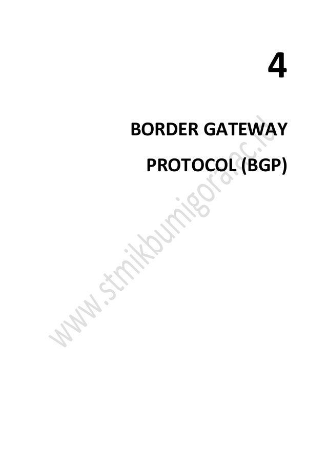 4 BORDER GATEWAY PROTOCOL (BGP)