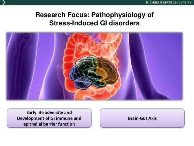 Pigs as a Biomedical Model for Stress and Brain-Gut Axis Disorders