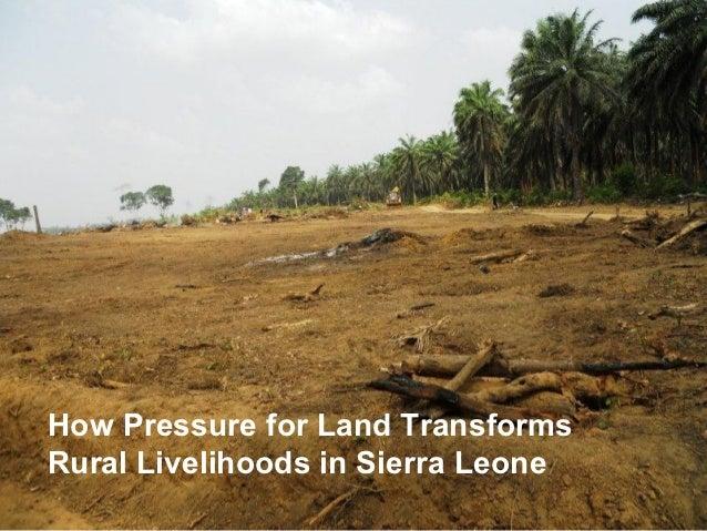 How Pressure for Land TransformsRural Livelihoods in Sierra Leone