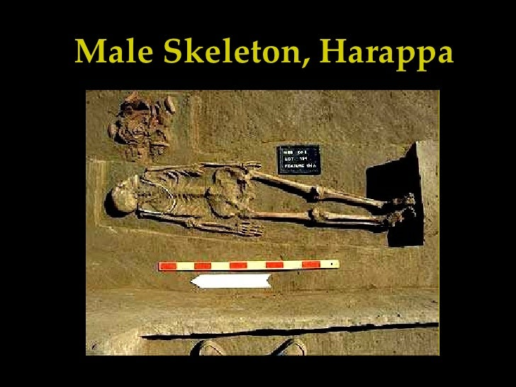 harappa essay Published: mon, 5 dec 2016 the indus valley civilization is also known as the harappan civilization after the village named harappa, in what is now pakistan, where the civilization was first discovered.