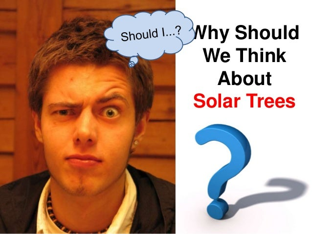Why Should We Think About Solar Trees