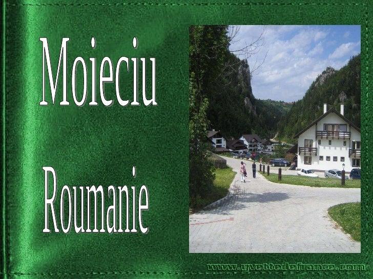 Moieciu Roumanie