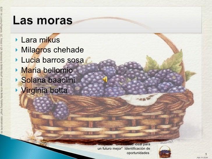 <ul><li>Lara mikus </li></ul><ul><li>Milagros chehade </li></ul><ul><li>Lucia barros sosa </li></ul><ul><li>Maria bellomio...
