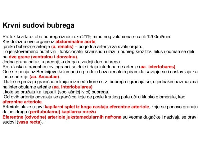 Bubreg (ren) Nefron – osnovna jedinica bubrega (> 1 milion) 1. glomerul (bubrežno telašce) – smotuljak krvnih kapilara, ul...