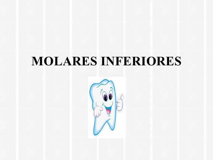 MOLARES INFERIORES