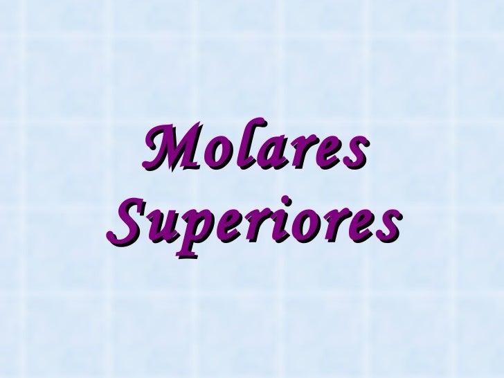 Molares Superiores
