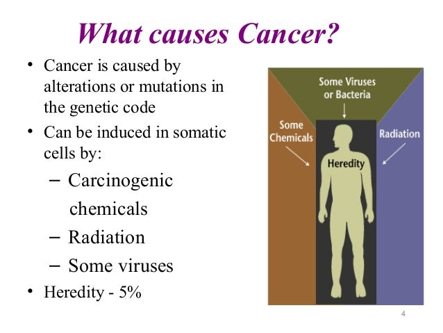 What causes cancer?