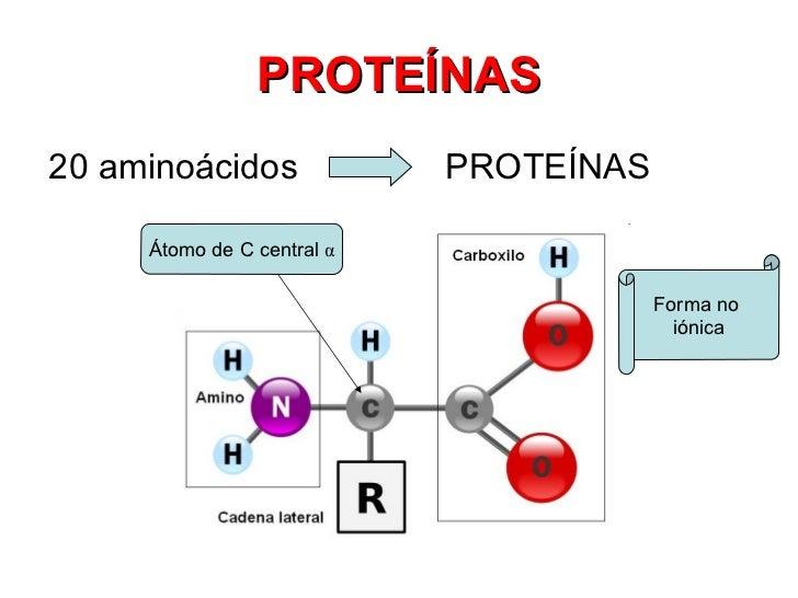 Resultado de imagen de Moléculas de proteínas