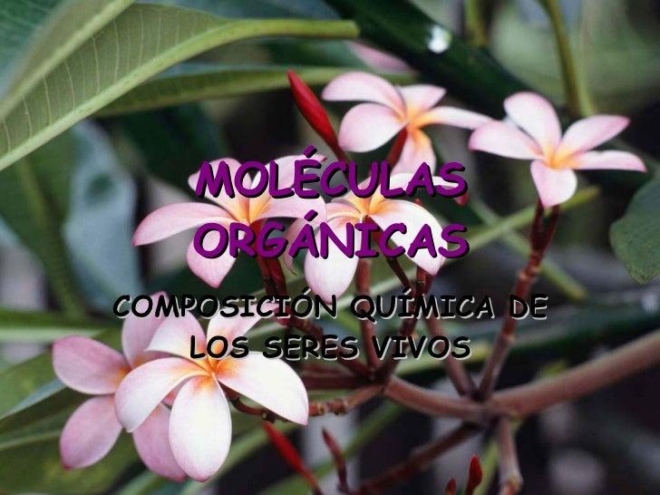 MOLÉCULAS     ORGÁNICAS COMPOSICIÓN QUÍMICA DE     LOS SERES VIVOS