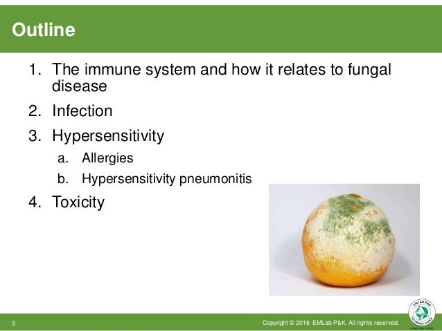 Outline 1. The immune system and how it relates to fungal disease 2. Infection 3. Hypersensitivity a. Allergies b. Hyperse...