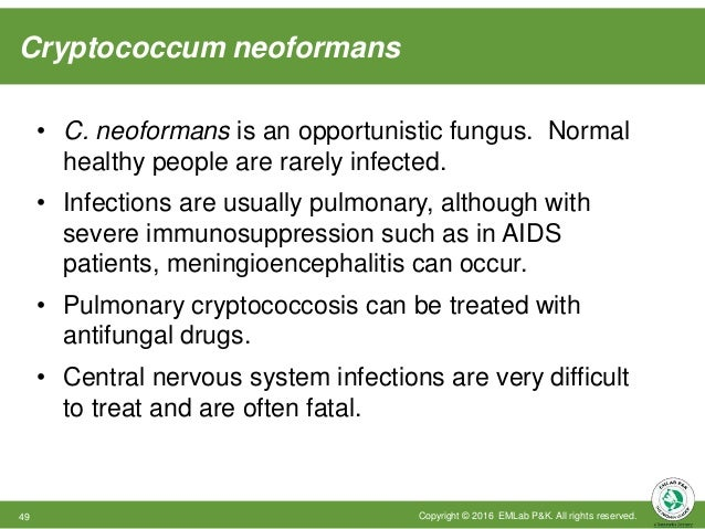 Cryptococcum neoformans Copyright © 2016 EMLab P&K. All rights reserved.49 • C. neoformans is an opportunistic fungus. Nor...