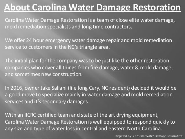 Mold Remediation Services At Raleigh Nc Carolina Water