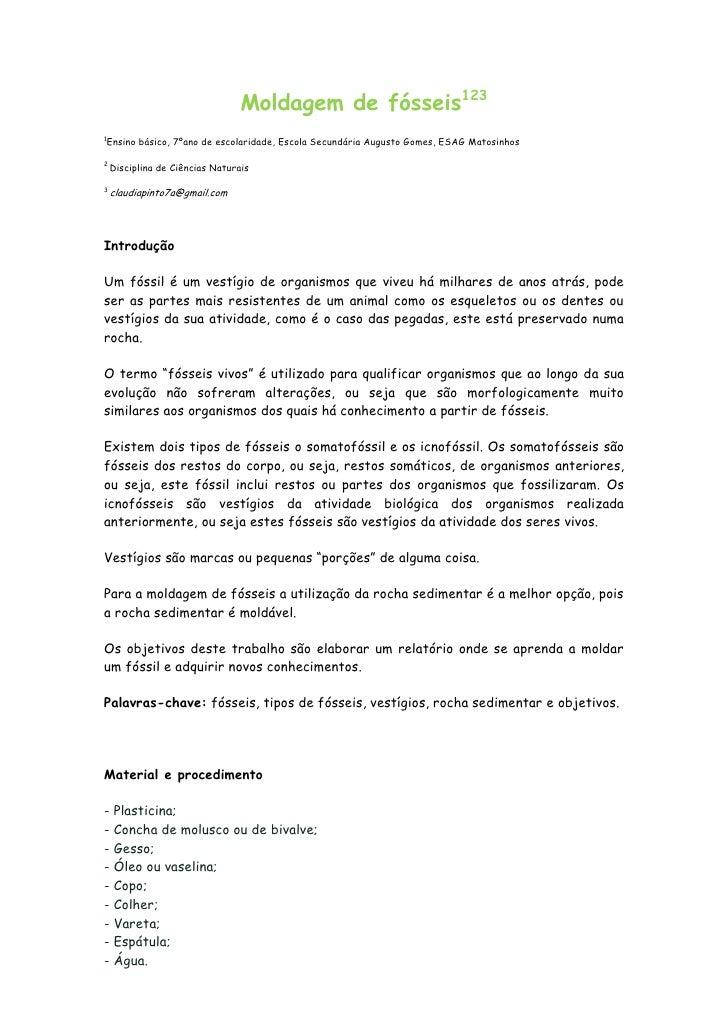Moldagem de fósseis1231    Ensino básico, 7ºano de escolaridade, Escola Secundária Augusto Gomes, ESAG Matosinhos2    Disc...