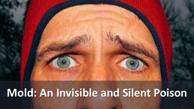 Mold: An Invisible and Silent Poison
