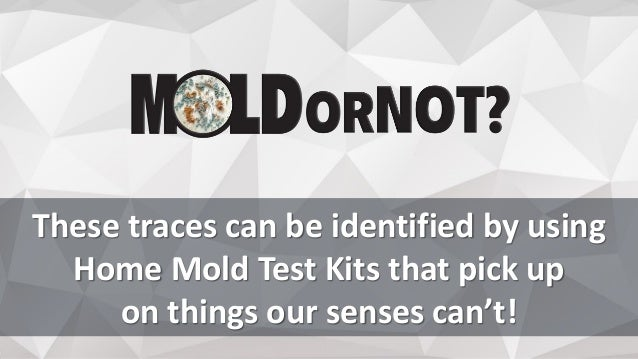 These traces can be identified by using Home Mold Test Kits that pick up on things our senses can't!