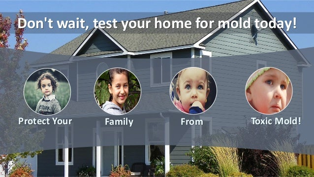 Don't wait, test your home for mold today! Protect Your Family From Toxic Mold!