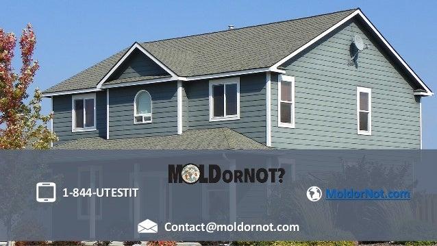 1-844-UTESTIT Contact@moldornot.com MoldorNot.com