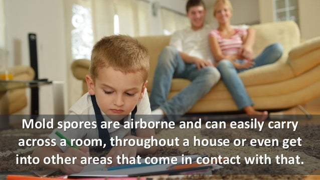 Mold spores are airborne and can easily carry across a room, throughout a house or even get into other areas that come in ...