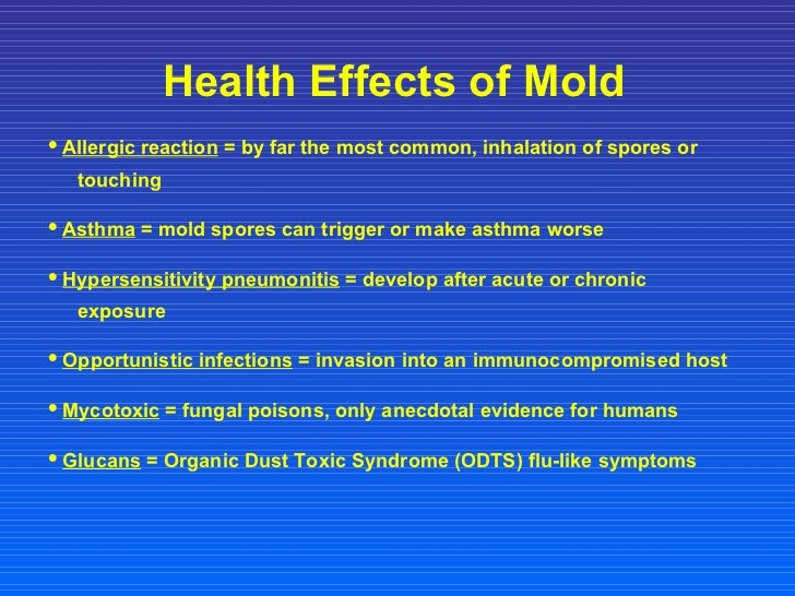 mold presentation 15 728