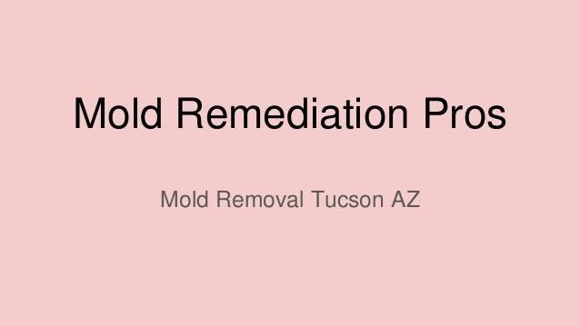 Mold Remediation Pros Mold Removal Tucson AZ