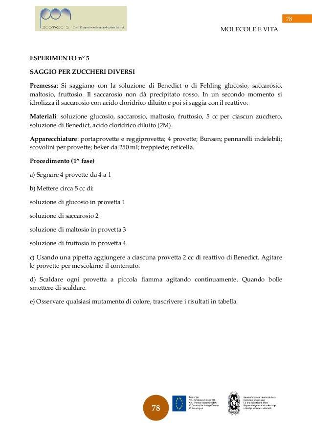 Molecole e vita for Provette e portaprovette