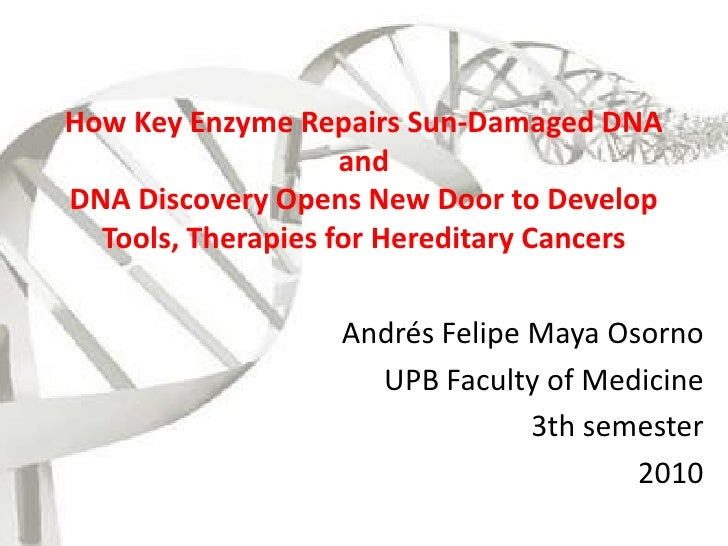 How Key Enzyme Repairs Sun-Damaged DNAandDNA Discovery Opens New Door to Develop Tools, Therapies for Hereditary Cancers<b...
