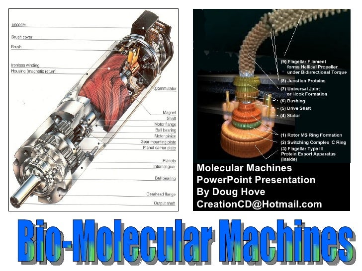 Bio-Molecular Machines  Molecular Machines  PowerPoint Presentation By Doug Hove [email_address]