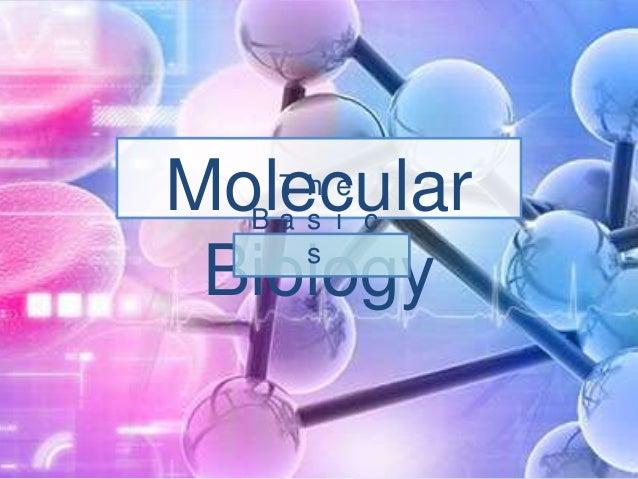 Molecular Biology Th e Ba s i c s
