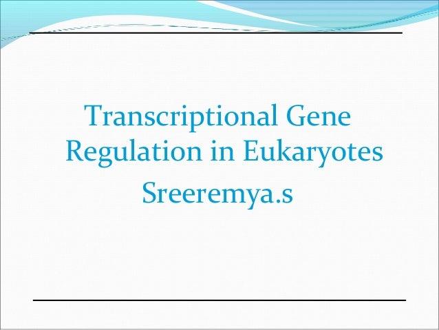 Transcriptional Gene Regulation in Eukaryotes Sreeremya.s