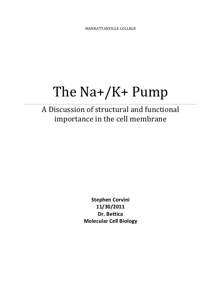 MANHATTANVILLE COLLEGE   The Na+/K+ PumpA Discussion of structural and functional   importance in the cell membrane       ...