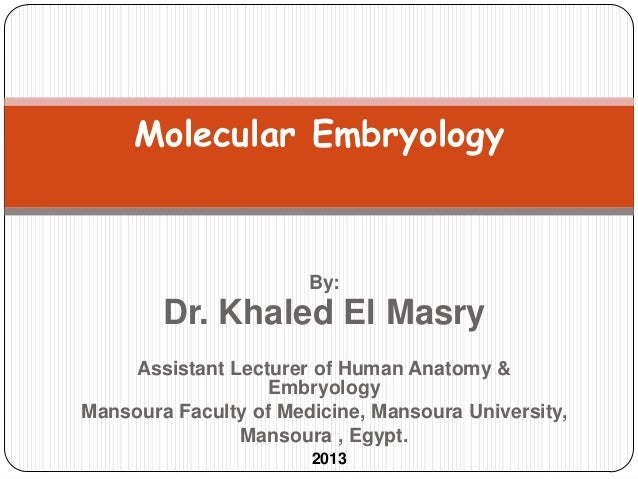 Molecular Embryology                       By:        Dr. Khaled El Masry    Assistant Lecturer of Human Anatomy &        ...