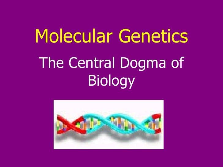 Molecular Genetics The Central Dogma of Biology